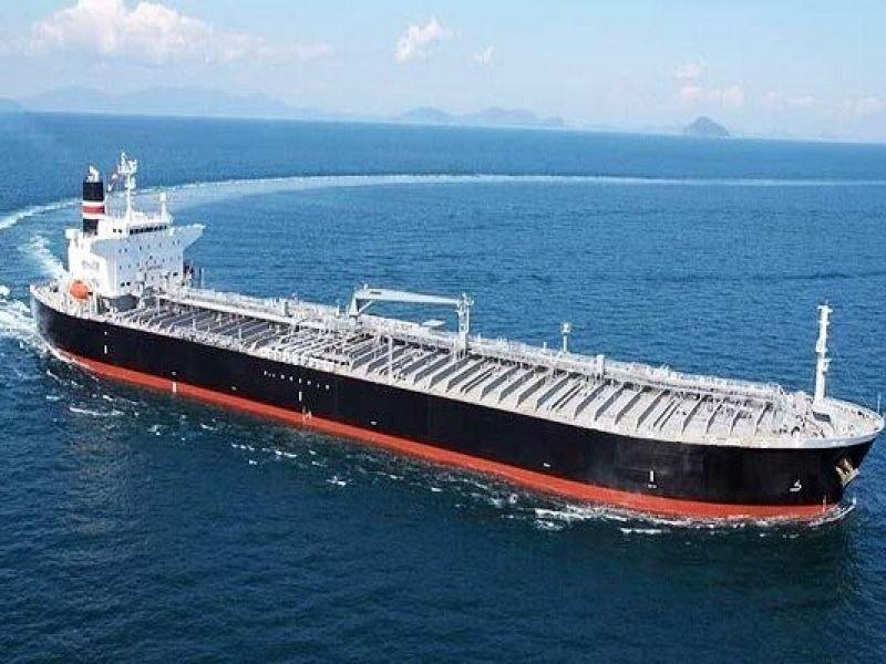 В гавань прибыл корабль с мертвым китом на носу